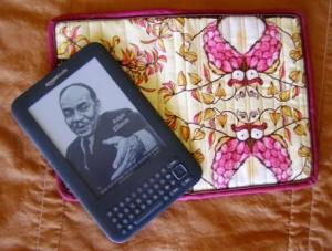 Kindle Cover and Kindle