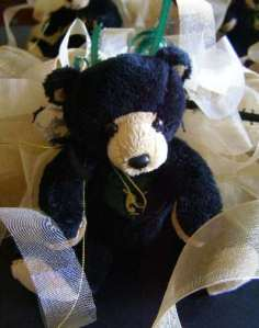 Teddy Bear for Senior Girls